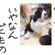 blog_import_53ef46ac07566.jpg