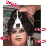 管理人のイメージ画像(再掲載です)