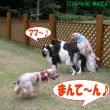 blog_import_53ef488b272db.jpg