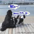 blog_import_53ef489b6af8b.jpg