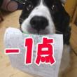 blog_import_53ef4943c8a80.jpg